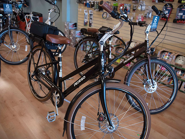 Pedego Bikes in Practical Cycle Store